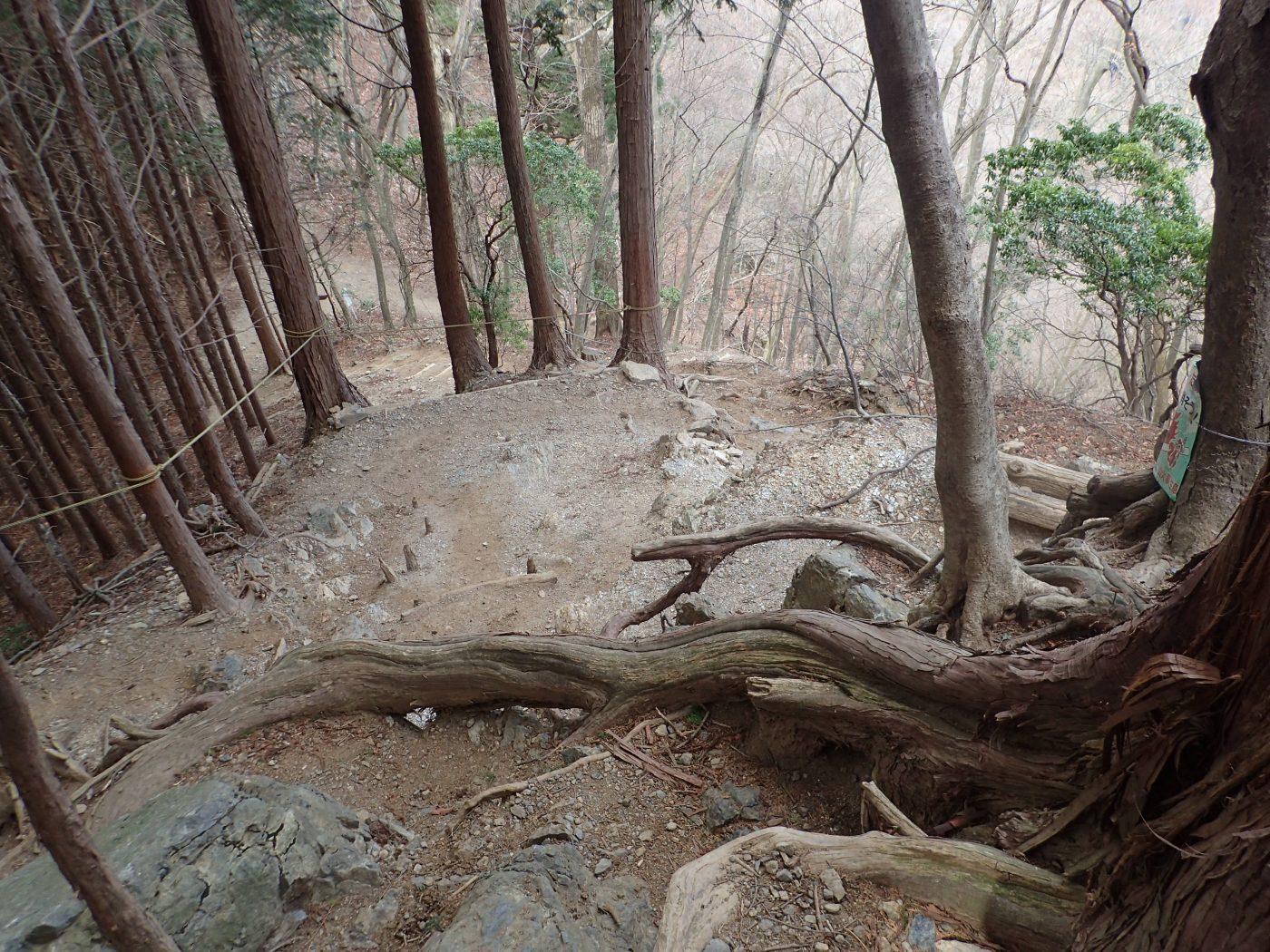 高水山から岩茸石山はアップダウンが多い