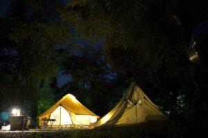 【disるつもりは毛頭ないよ!!】ぶっちゃけ普通のキャンプで使うペグは20センチのもので十分説