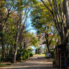 【エモーションが止まらない】有野実苑オートキャンプ場の景色が美し過ぎて涙が止まらないんだが。