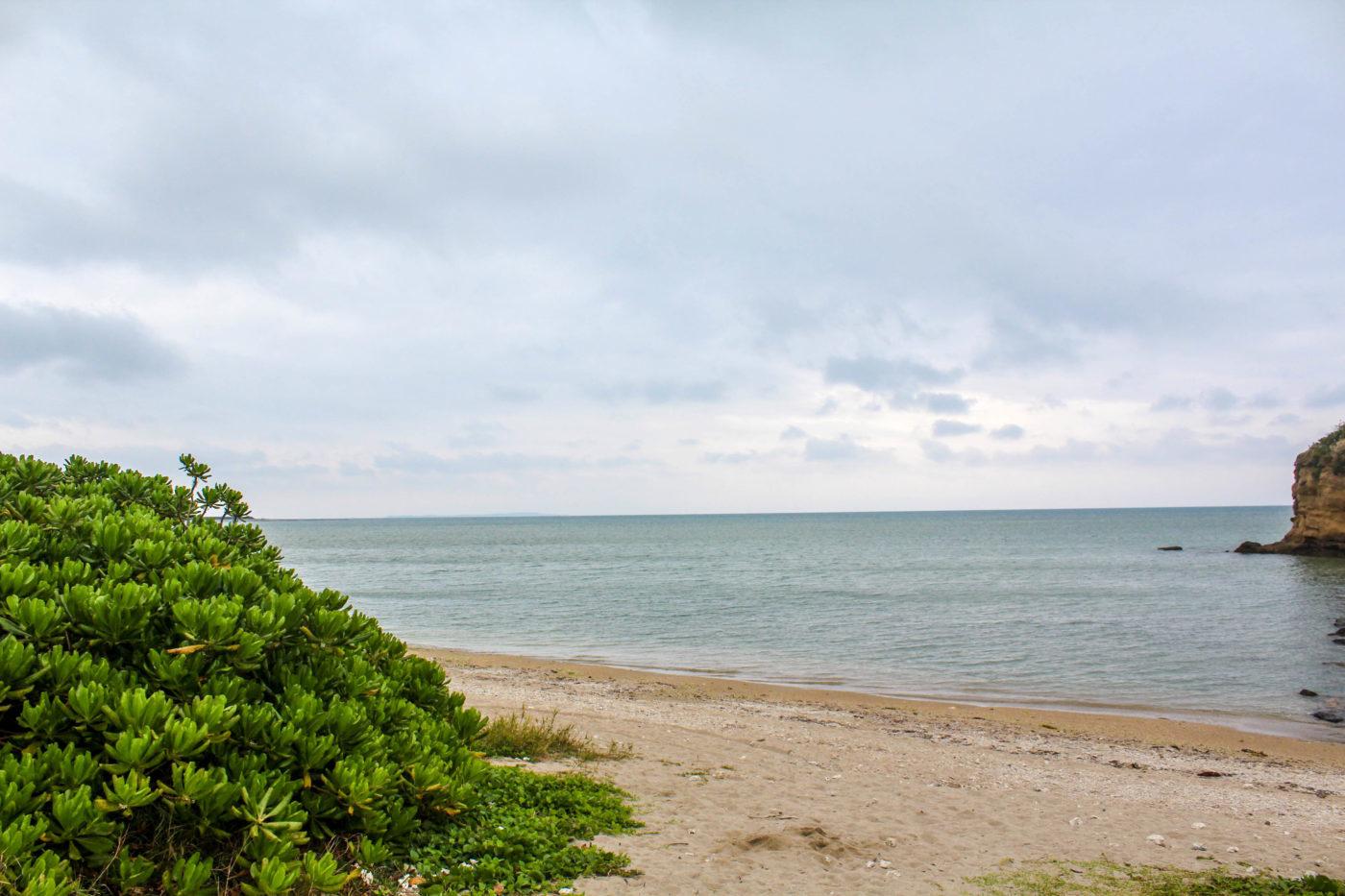 沖縄県総合公園オートキャンプ場は海で遊べるキャンプ場