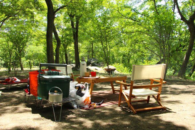 新緑のキャンプ