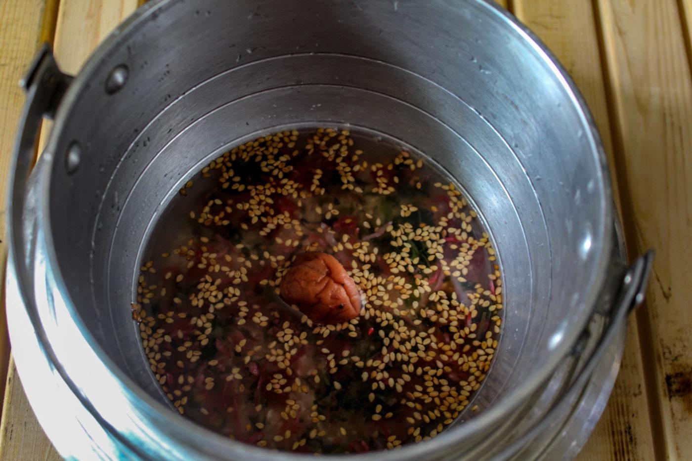 ユニフレームキャンプ羽釜を使った梅じゃこ炊き込みご飯